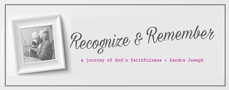 Reintroducing ~ Recognize & Remember Blog